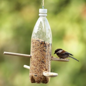 DIY bird feeder - they're pretty expensive in the shops aren't they?!